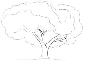 tree 600